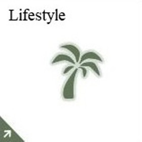 Lr Lifestyle